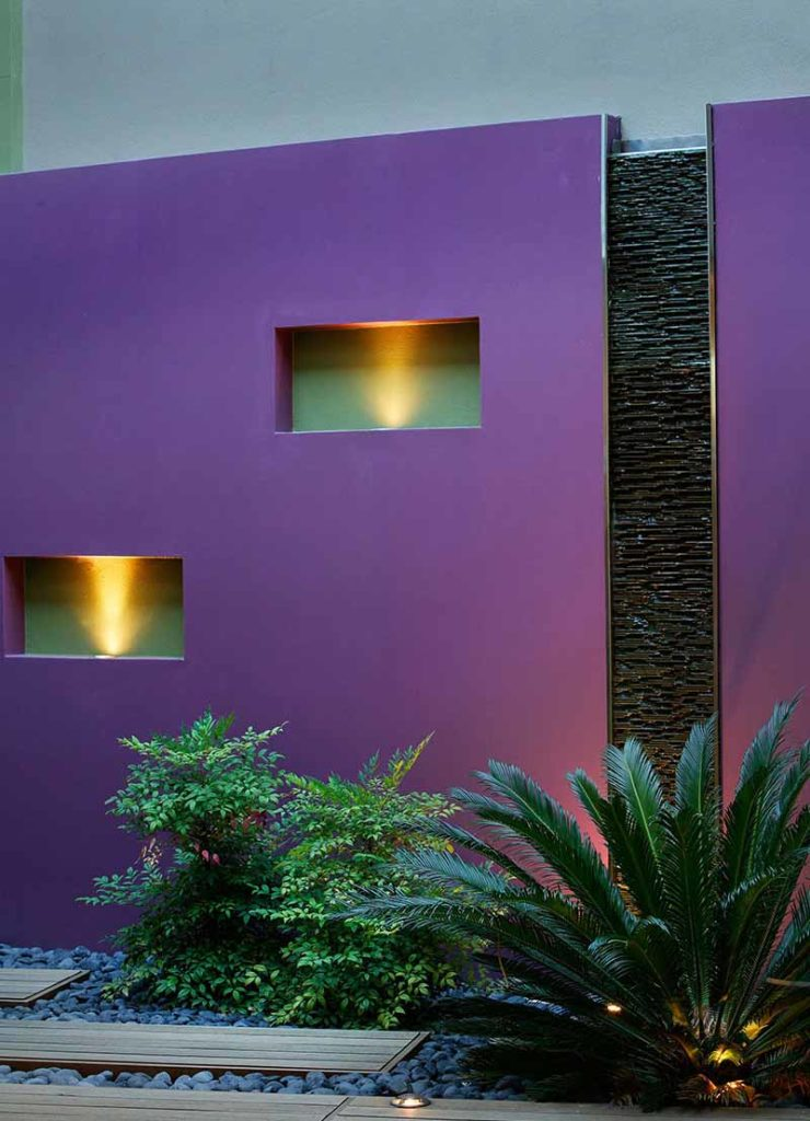Purple feature wall in Subiaco courtyard