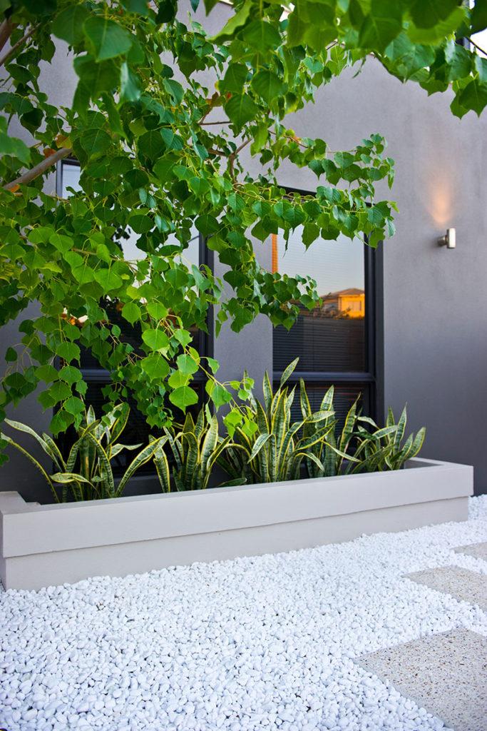 White pebbles in amazing garden