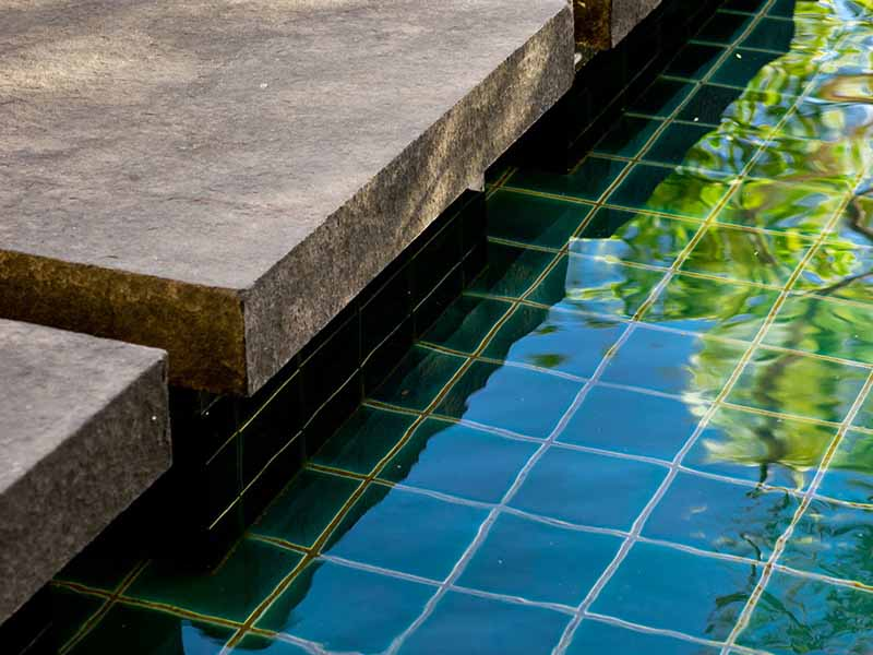 pond detail